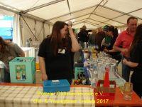 Oldtimer_Treffen_2017_400