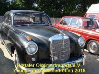 Treffen_2018_Young_Oldtimer_090
